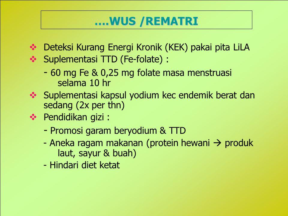 ….WUS /REMATRI Deteksi Kurang Energi Kronik (KEK) pakai pita LiLA. Suplementasi TTD (Fe-folate) :