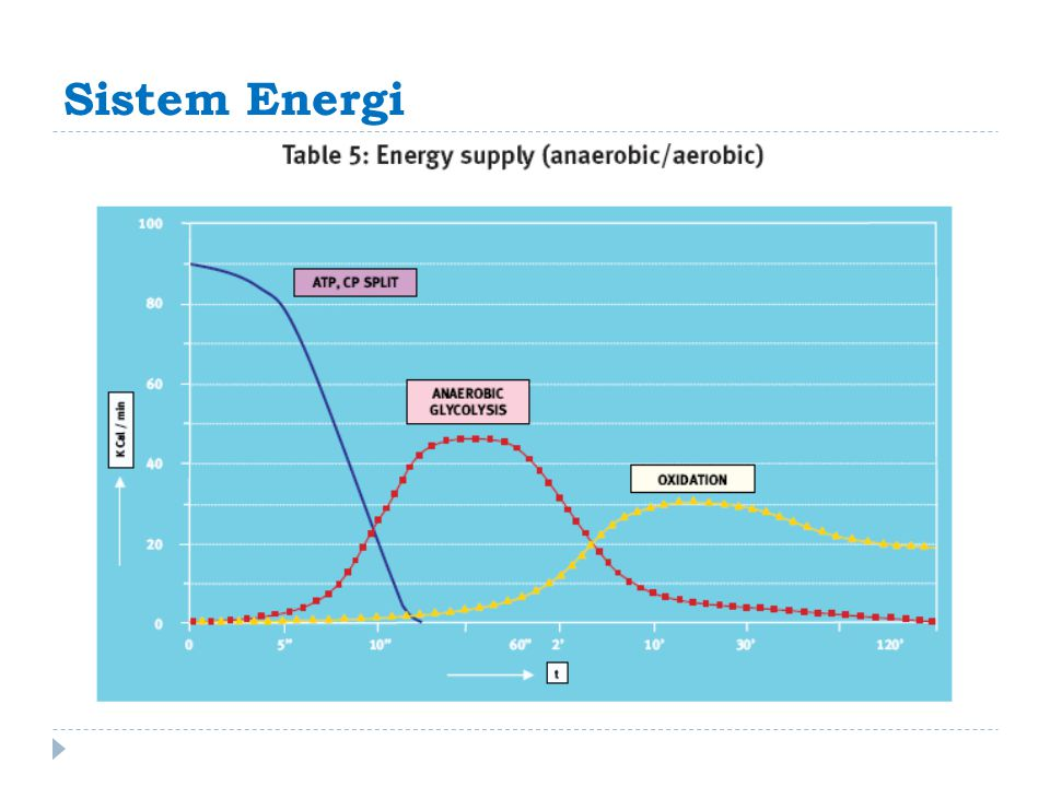 Sistem Energi