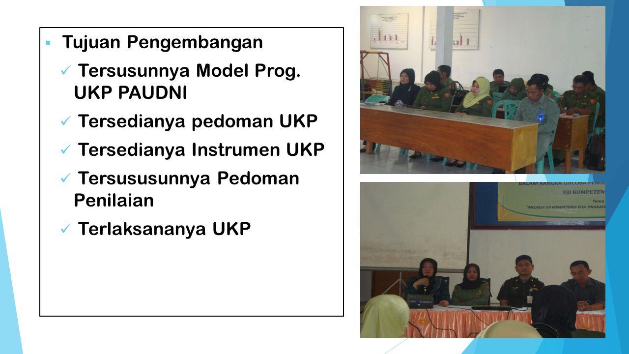 Tujuan Pengembangan Tersusunnya Model Prog. UKP PAUDNI. Tersedianya pedoman UKP. Tersedianya Instrumen UKP.
