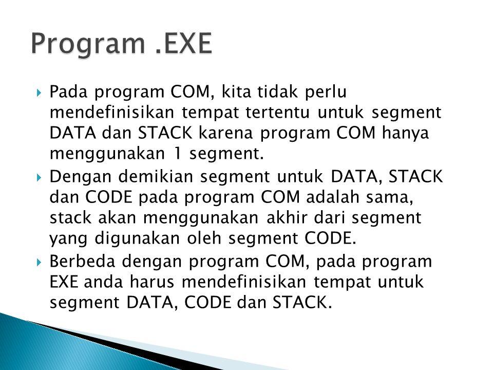 Program .EXE