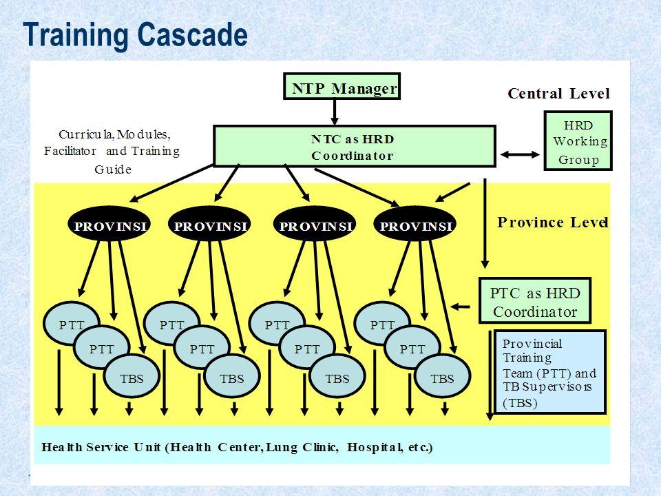 Training Cascade
