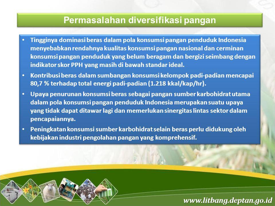 Permasalahan diversifikasi pangan