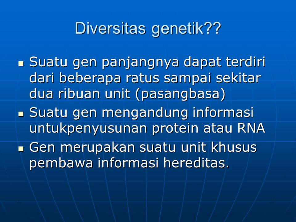 Diversitas genetik Suatu gen panjangnya dapat terdiri dari beberapa ratus sampai sekitar dua ribuan unit (pasangbasa)