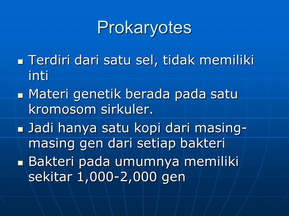 Prokaryotes Terdiri dari satu sel, tidak memiliki inti
