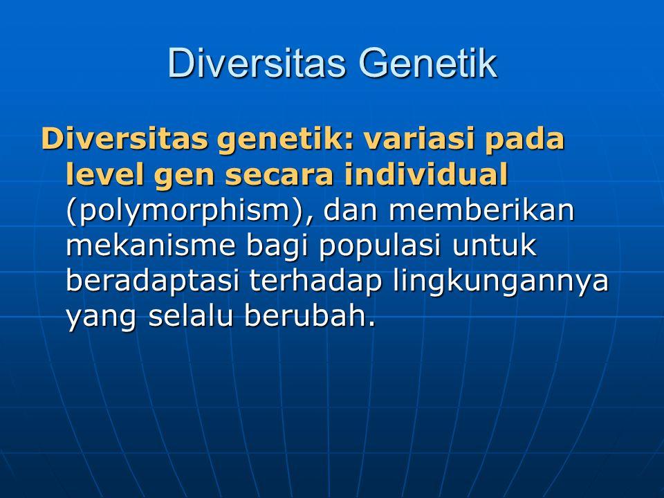 Diversitas Genetik