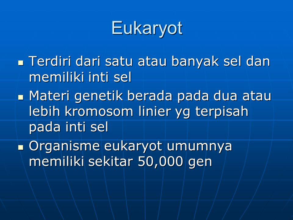 Eukaryot Terdiri dari satu atau banyak sel dan memiliki inti sel