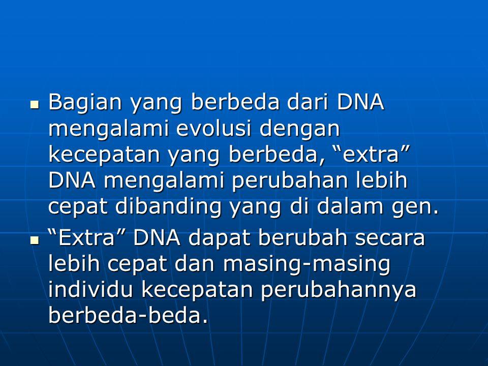 Bagian yang berbeda dari DNA mengalami evolusi dengan kecepatan yang berbeda, extra DNA mengalami perubahan lebih cepat dibanding yang di dalam gen.