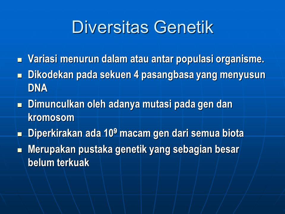 Diversitas Genetik Variasi menurun dalam atau antar populasi organisme. Dikodekan pada sekuen 4 pasangbasa yang menyusun DNA.