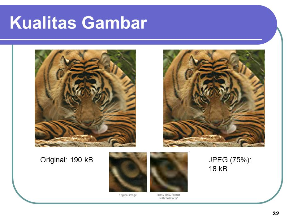 Kualitas Gambar Original: 190 kB JPEG (75%): 18 kB