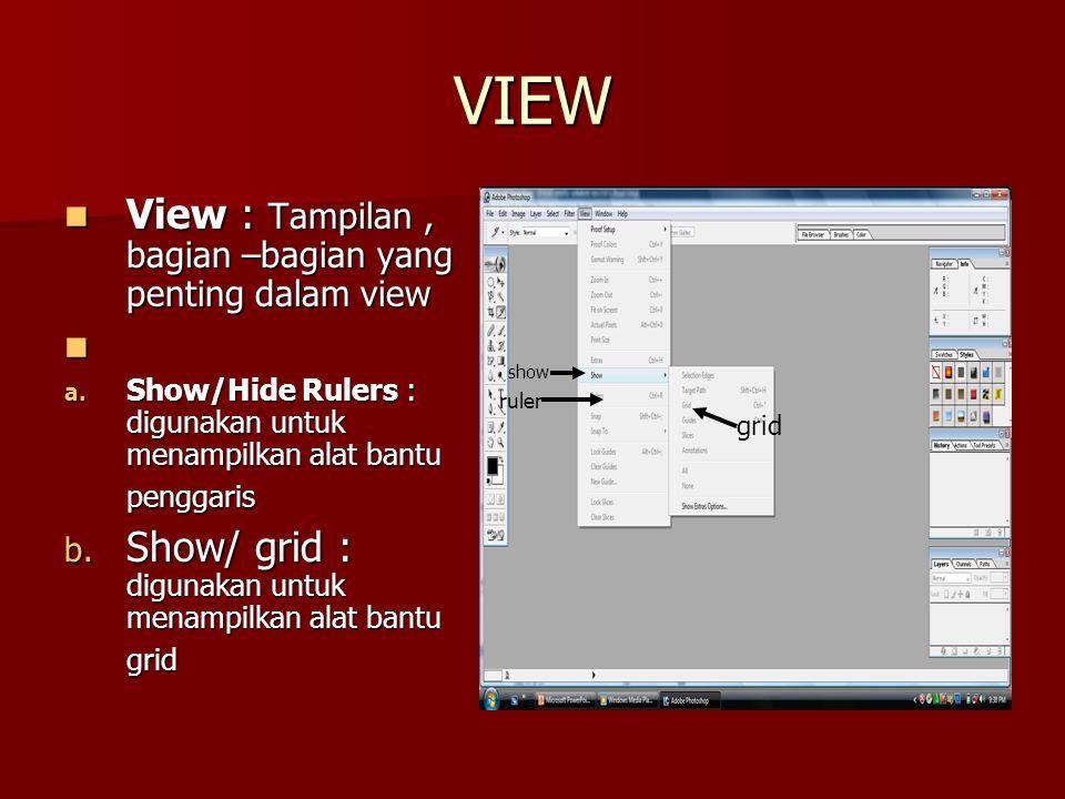 VIEW View : Tampilan , bagian –bagian yang penting dalam view