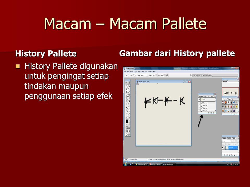 Macam – Macam Pallete History Pallete Gambar dari History pallete