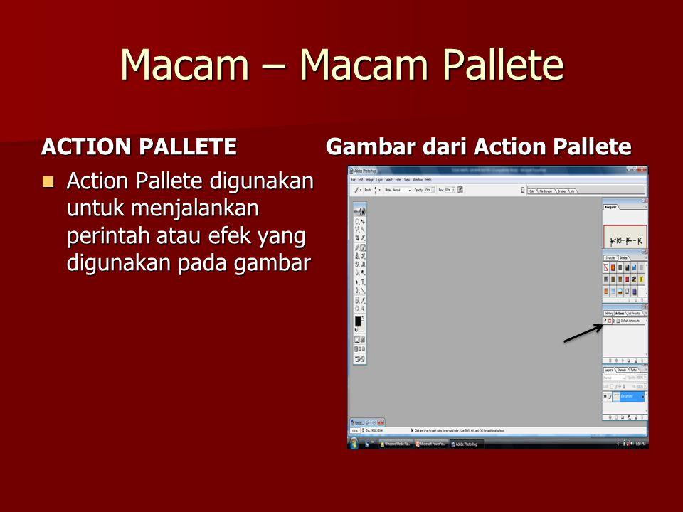 Macam – Macam Pallete ACTION PALLETE Gambar dari Action Pallete
