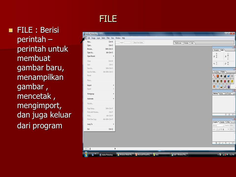 FILE : Berisi perintah – perintah untuk membuat gambar baru, menampilkan gambar , mencetak , mengimport, dan juga keluar dari program