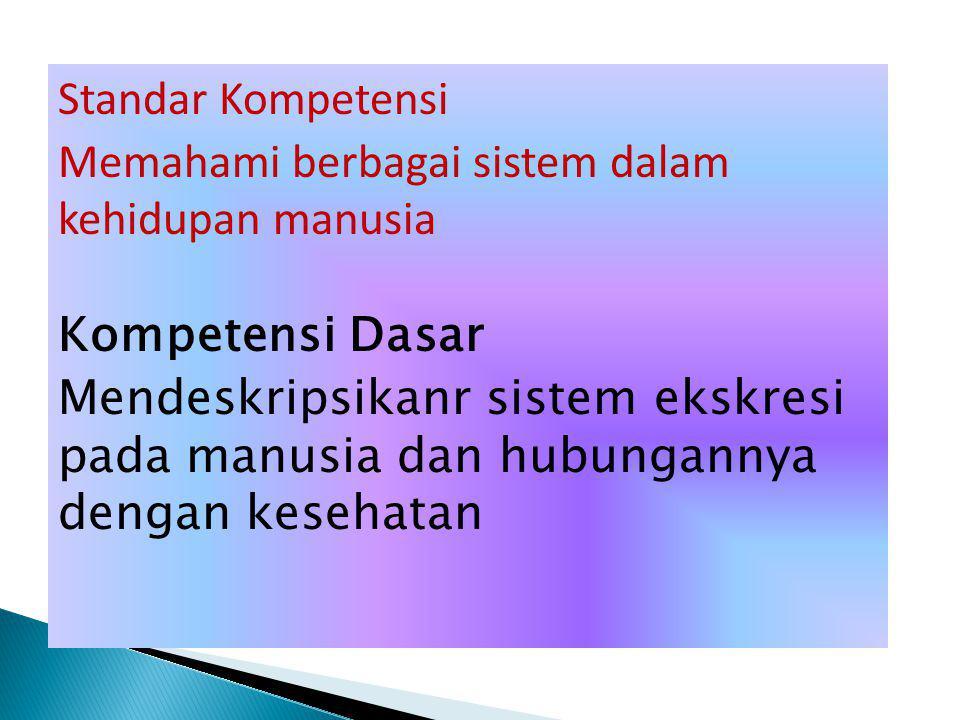 Standar Kompetensi Memahami berbagai sistem dalam kehidupan manusia Kompetensi Dasar Mendeskripsikanr sistem ekskresi pada manusia dan hubungannya dengan kesehatan