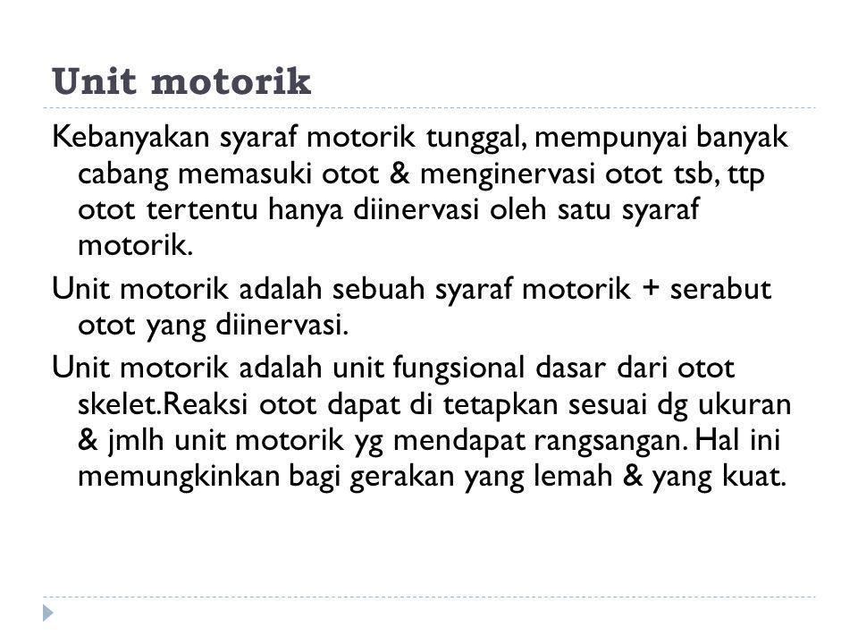 Unit motorik