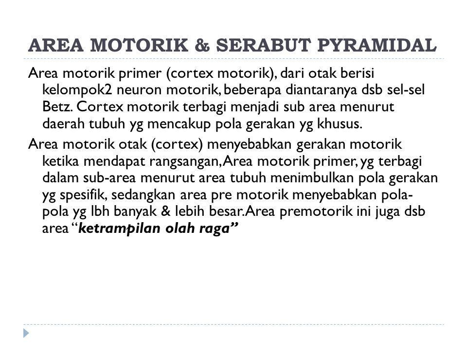AREA MOTORIK & SERABUT PYRAMIDAL