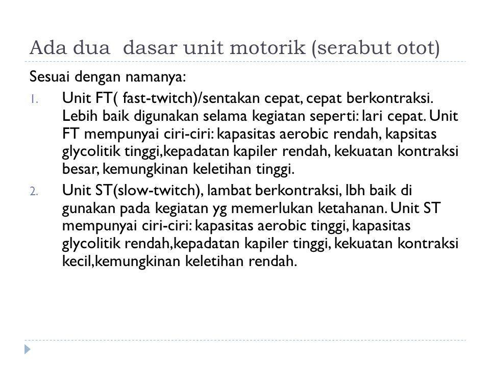 Ada dua dasar unit motorik (serabut otot)