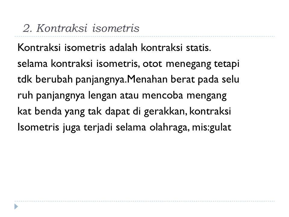 2. Kontraksi isometris