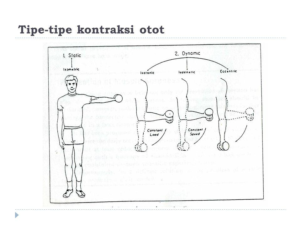 Tipe-tipe kontraksi otot