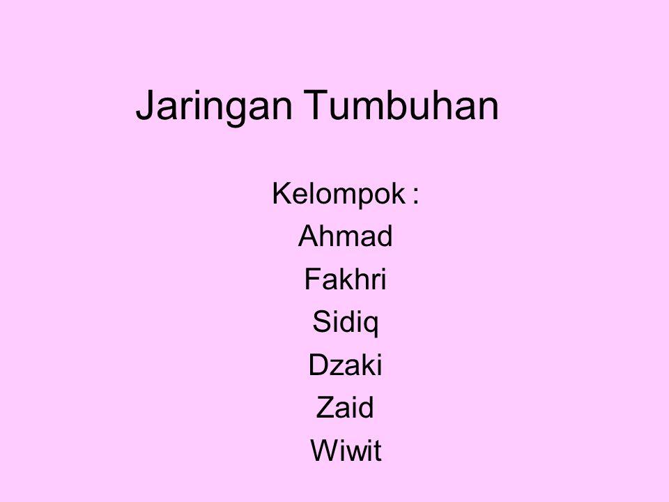 Kelompok : Ahmad Fakhri Sidiq Dzaki Zaid Wiwit
