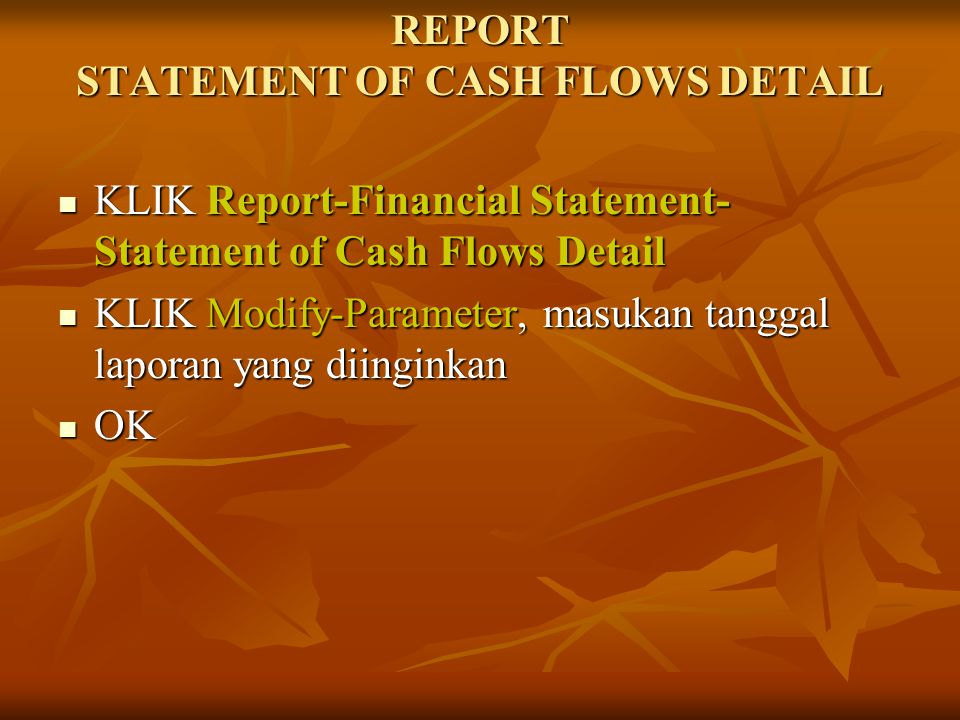 REPORT STATEMENT OF CASH FLOWS DETAIL
