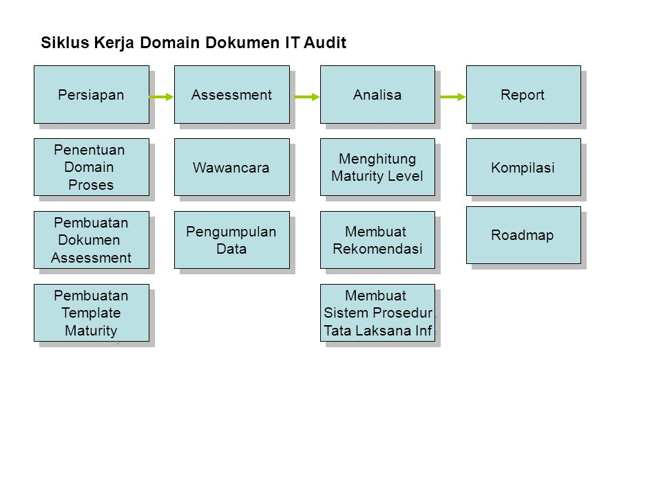Siklus Kerja Domain Dokumen IT Audit