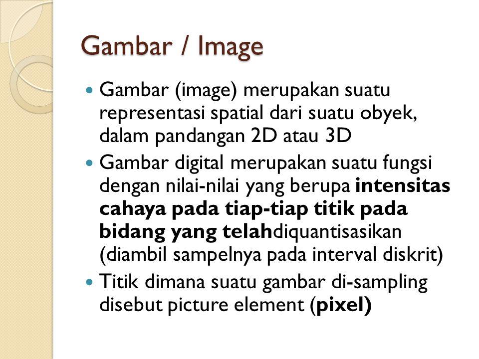 Gambar / Image Gambar (image) merupakan suatu representasi spatial dari suatu obyek, dalam pandangan 2D atau 3D.