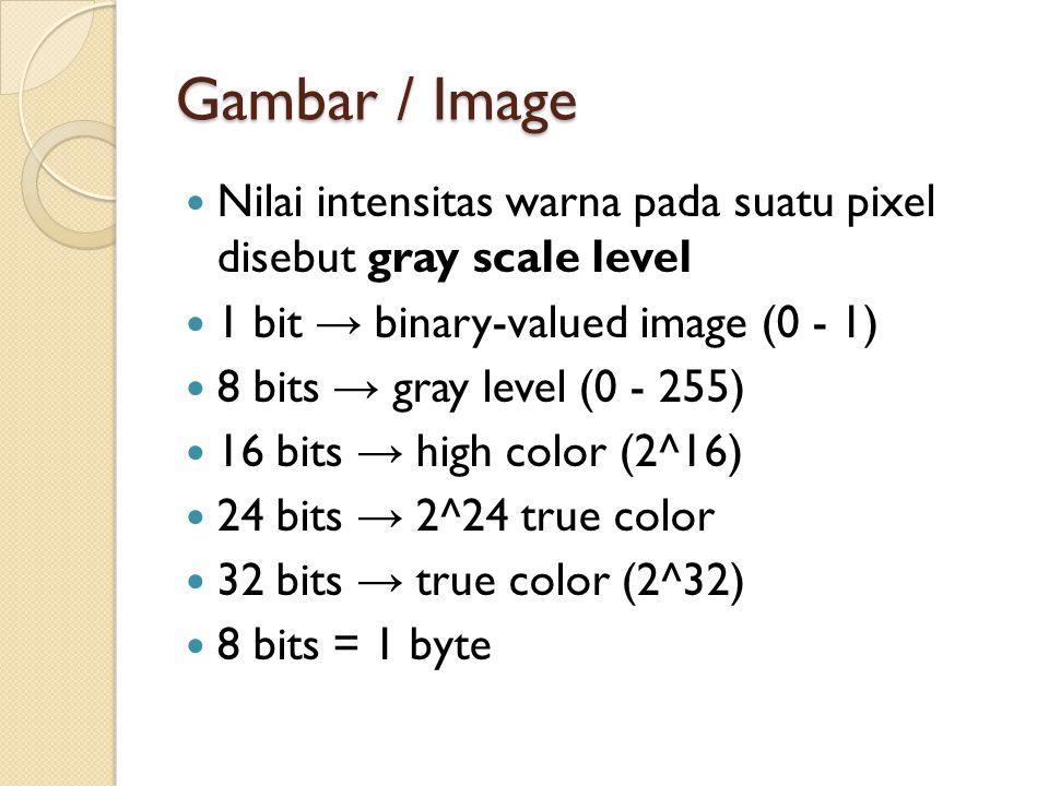 Gambar / Image Nilai intensitas warna pada suatu pixel disebut gray scale level. 1 bit → binary-valued image (0 - 1)