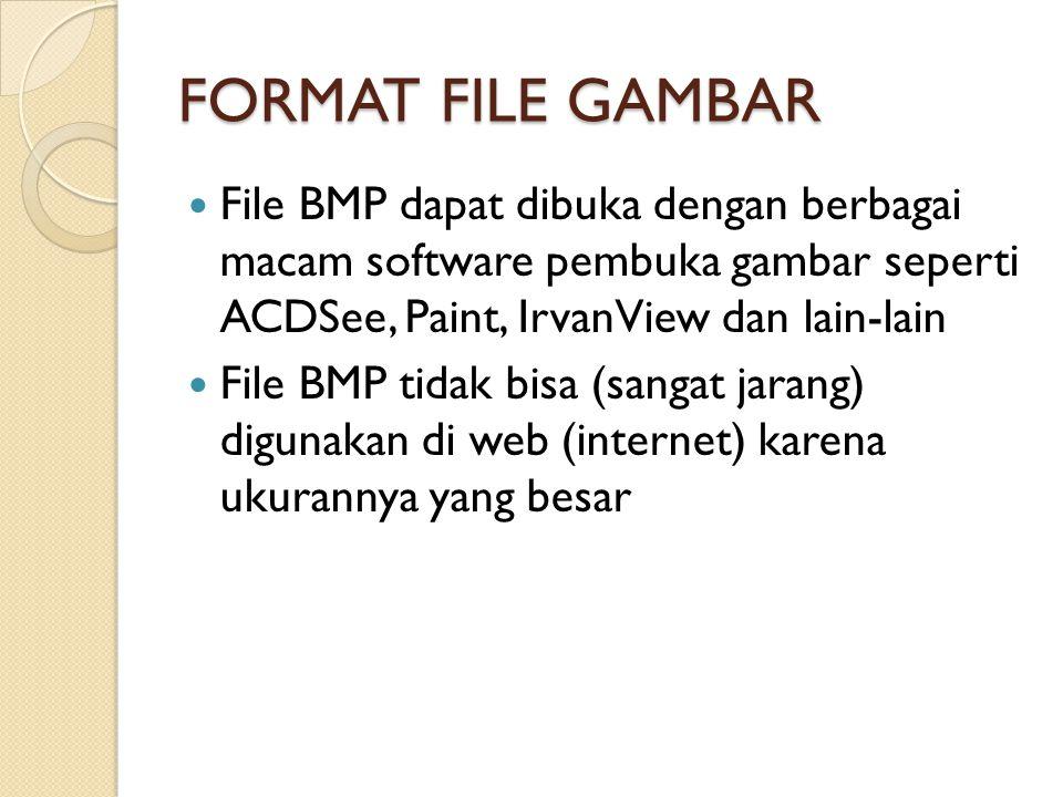 FORMAT FILE GAMBAR File BMP dapat dibuka dengan berbagai macam software pembuka gambar seperti ACDSee, Paint, IrvanView dan lain-lain.