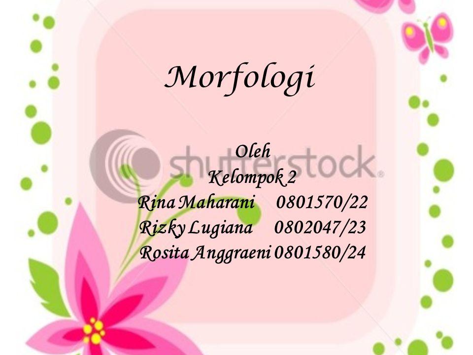 Morfologi Oleh Kelompok 2 Rina Maharani 0801570/22