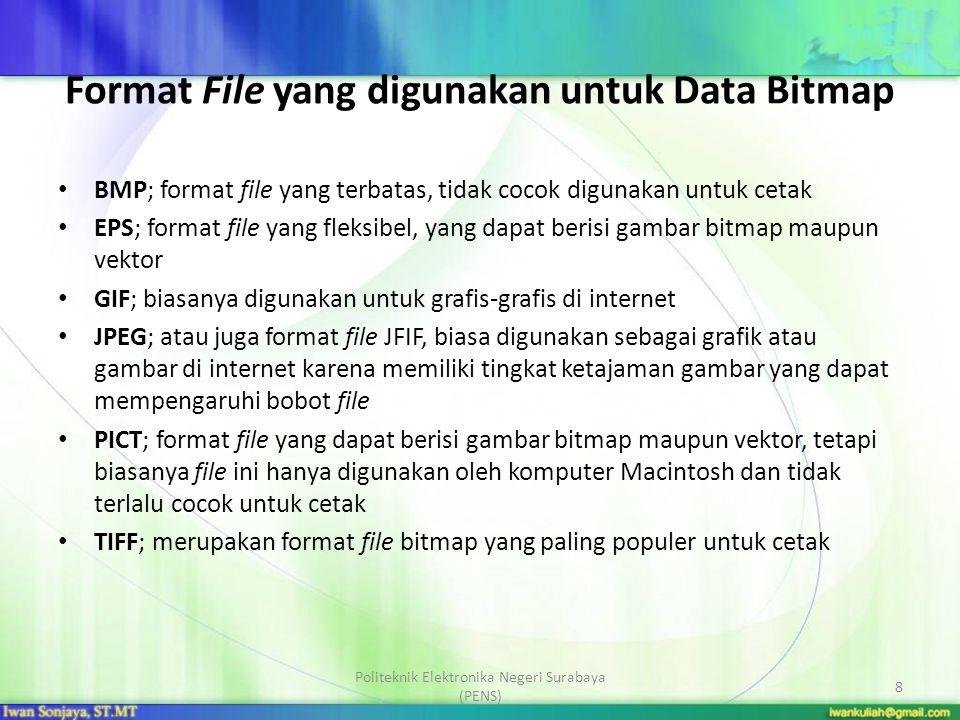 Format File yang digunakan untuk Data Bitmap