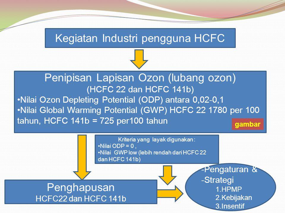 Kegiatan Industri pengguna HCFC
