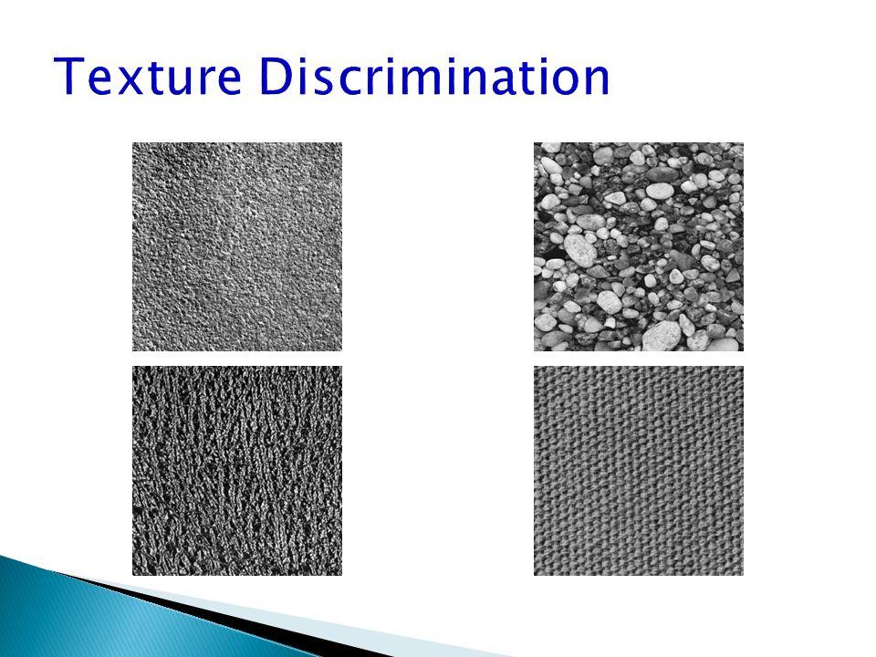 Texture Discrimination