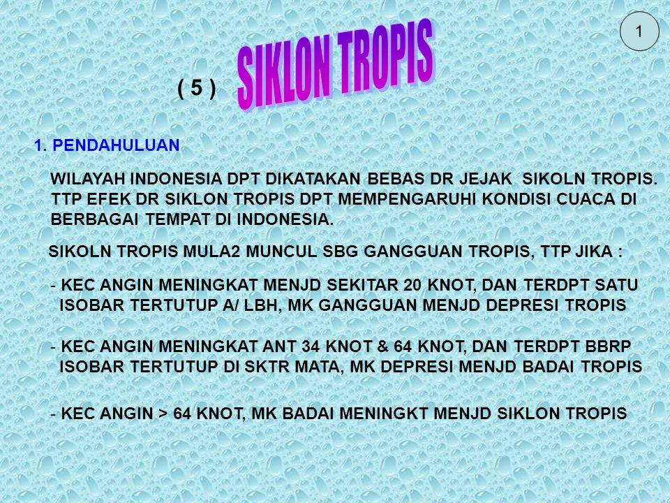 SIKLON TROPIS ( 5 ) 1 1. PENDAHULUAN