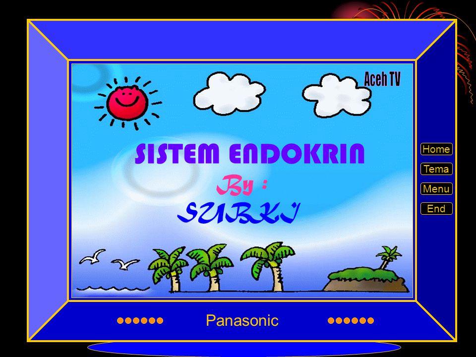 Panasonic Aceh TV SISTEM ENDOKRIN Home Tema By : Menu SUBKI End