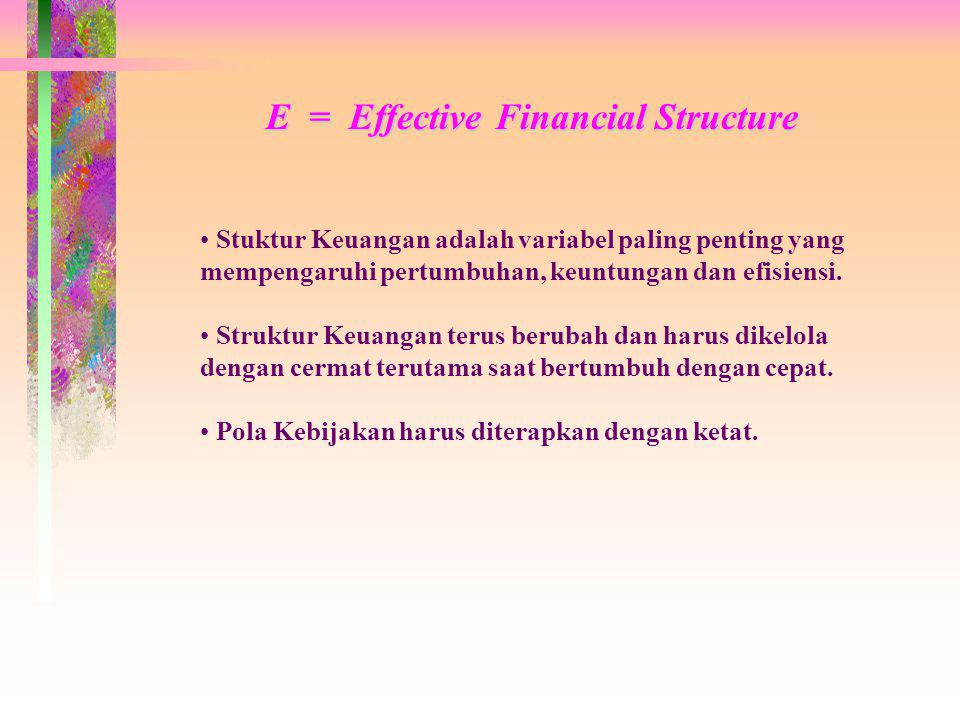 E = Effective Financial Structure