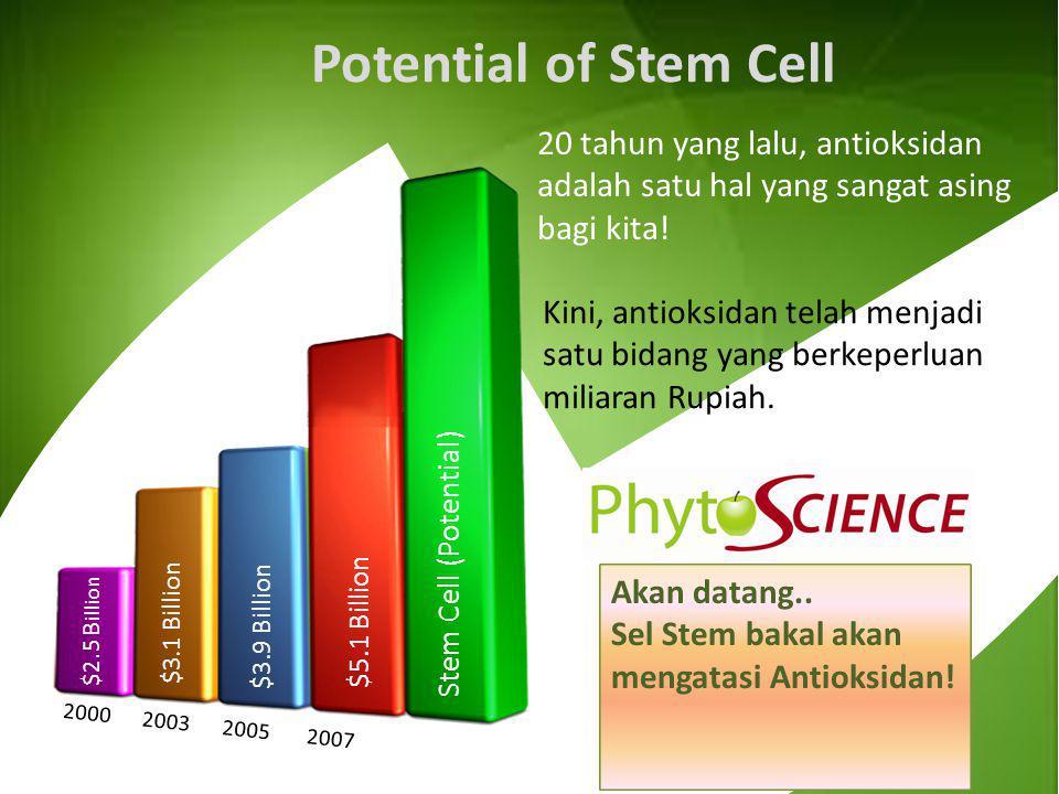 Potential of Stem Cell 20 tahun yang lalu, antioksidan adalah satu hal yang sangat asing bagi kita!