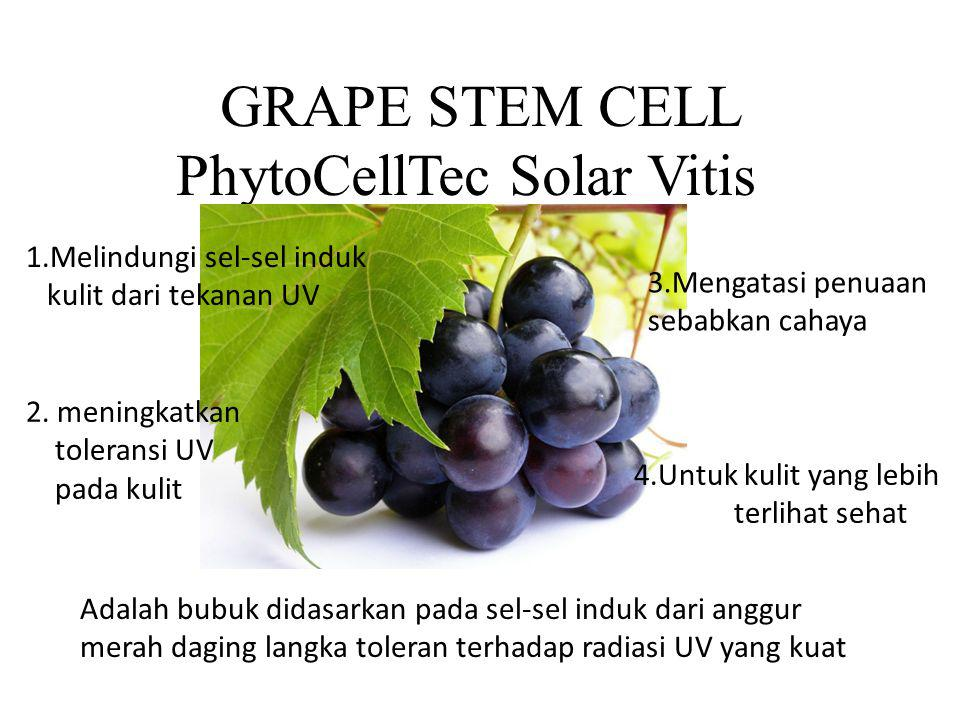 PhytoCellTec Solar Vitis