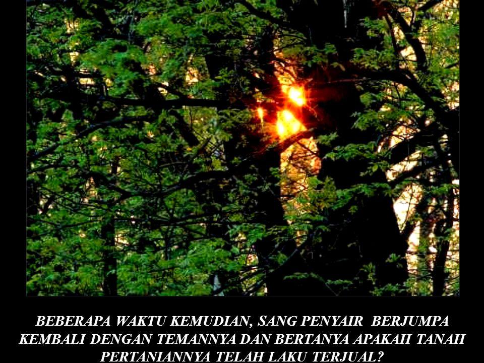 © BEBERAPA WAKTU KEMUDIAN, SANG PENYAIR BERJUMPA KEMBALI DENGAN TEMANNYA DAN BERTANYA APAKAH TANAH PERTANIANNYA TELAH LAKU TERJUAL