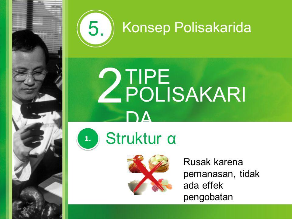 2 5. TIPE POLISAKARIDA Struktur α Konsep Polisakarida