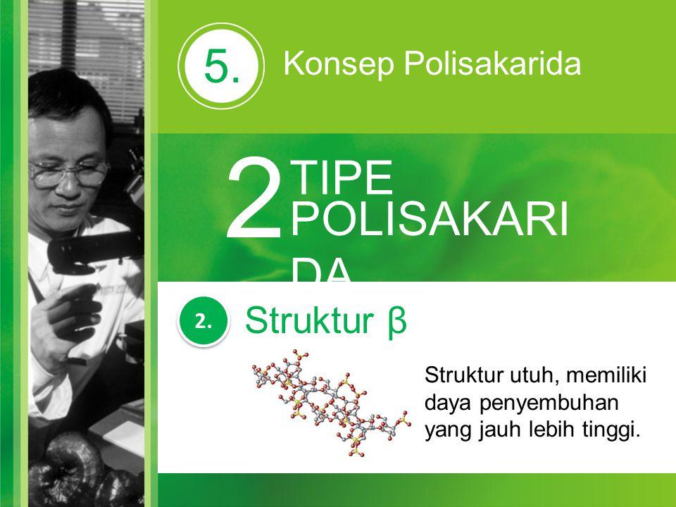 2 5. TIPE POLISAKARIDA Struktur β Konsep Polisakarida 2.