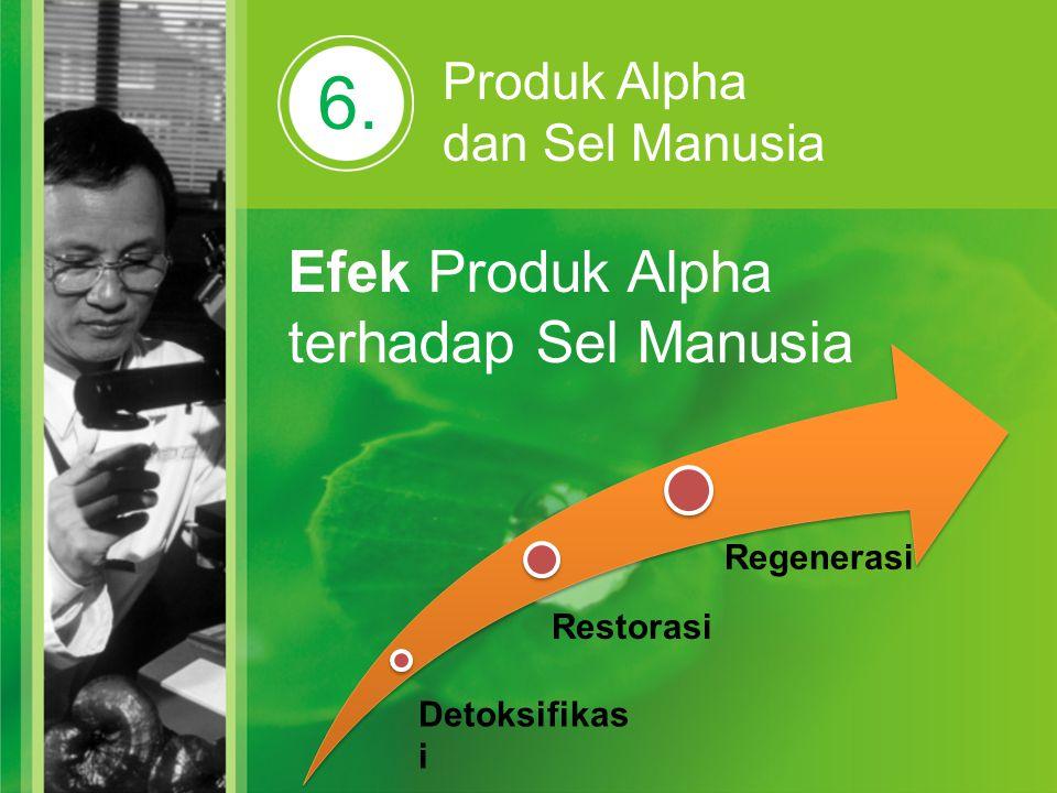 6. Efek Produk Alpha terhadap Sel Manusia Produk Alpha dan Sel Manusia