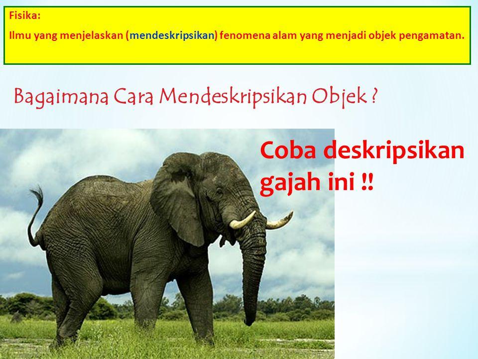 Coba deskripsikan gajah ini !!