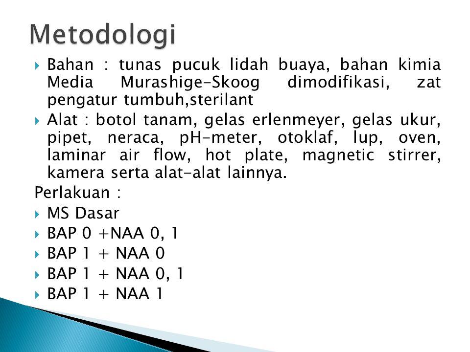 Metodologi Bahan : tunas pucuk lidah buaya, bahan kimia Media Murashige-Skoog dimodifikasi, zat pengatur tumbuh,sterilant.