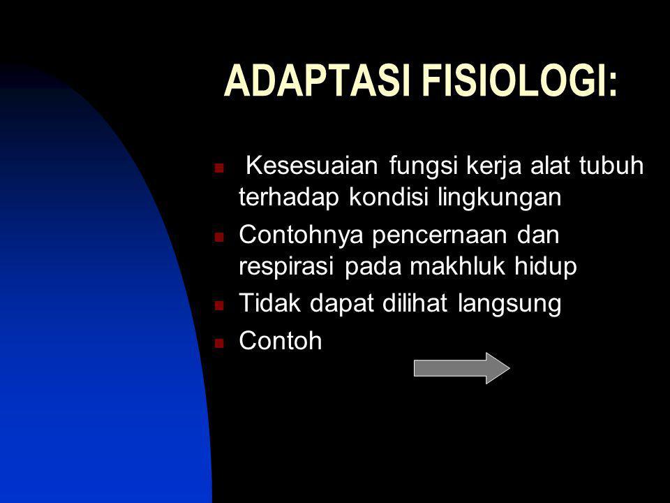 ADAPTASI FISIOLOGI: Kesesuaian fungsi kerja alat tubuh terhadap kondisi lingkungan. Contohnya pencernaan dan respirasi pada makhluk hidup.