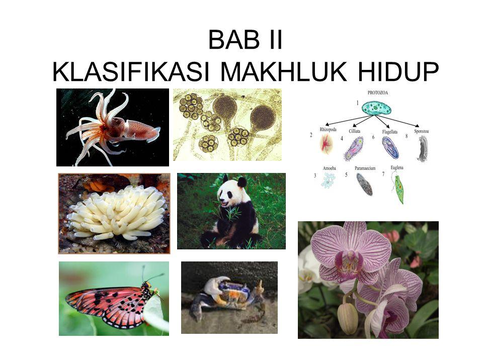BAB II KLASIFIKASI MAKHLUK HIDUP