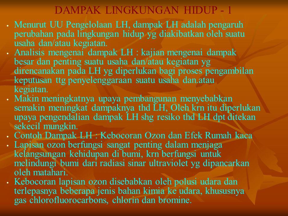 DAMPAK LINGKUNGAN HIDUP - 1