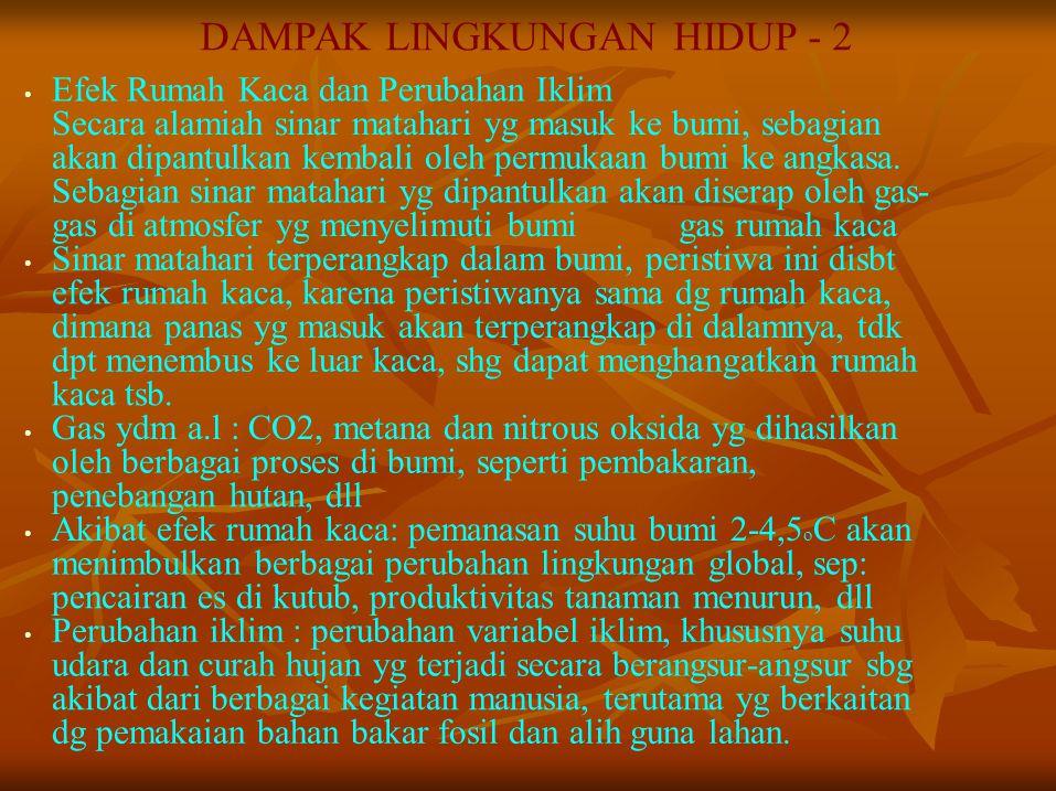 DAMPAK LINGKUNGAN HIDUP - 2