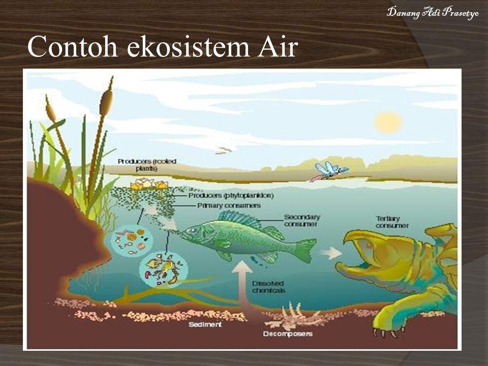 Danang Adi Prasetyo Contoh ekosistem Air