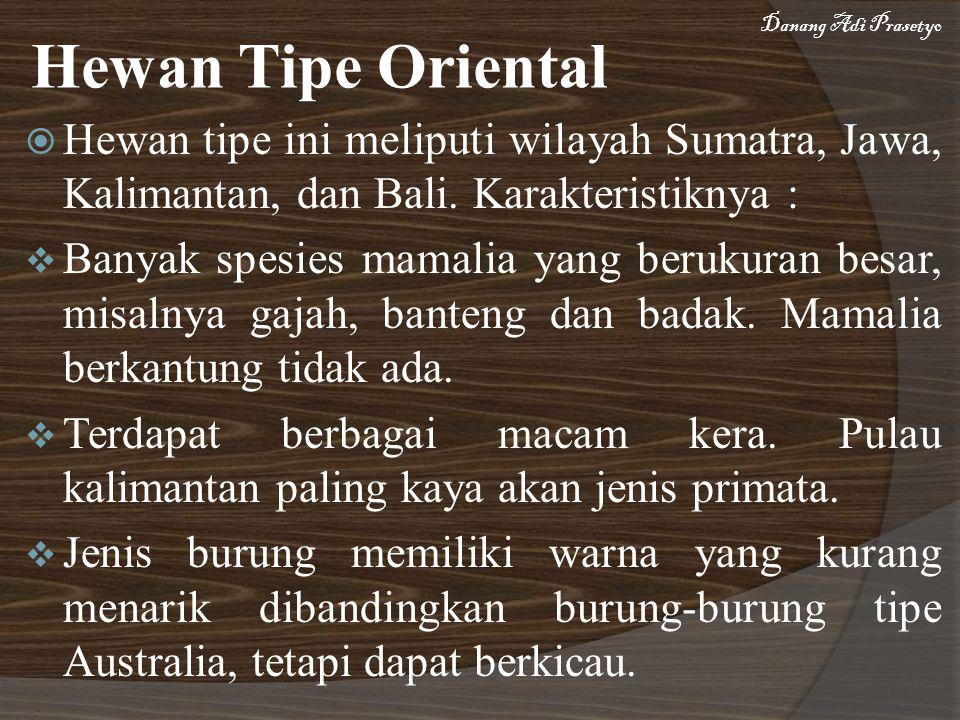 Danang Adi Prasetyo Hewan Tipe Oriental. Hewan tipe ini meliputi wilayah Sumatra, Jawa, Kalimantan, dan Bali. Karakteristiknya :